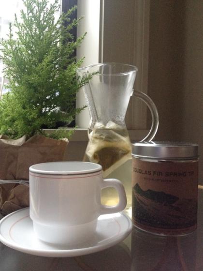 Douglas Fir tea